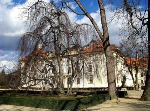 Slávkov u Brna, zámok 34 - 4.3.2015