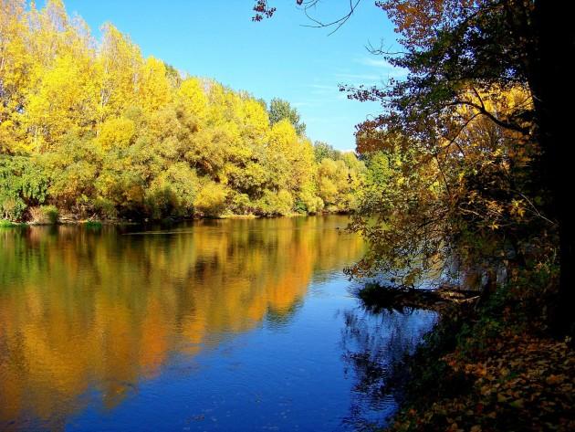 Malý Dunaj 24 - X.2013