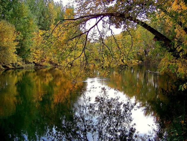 Malý Dunaj 27 - X.2013