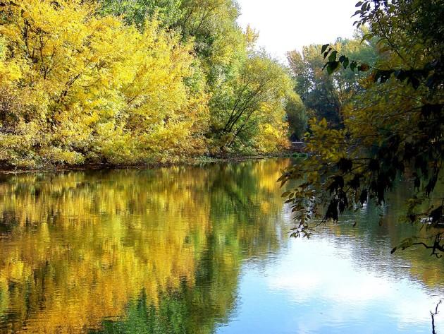 Malý Dunaj 39 - X.2013