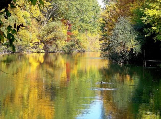 Malý Dunaj 41 - X.2013