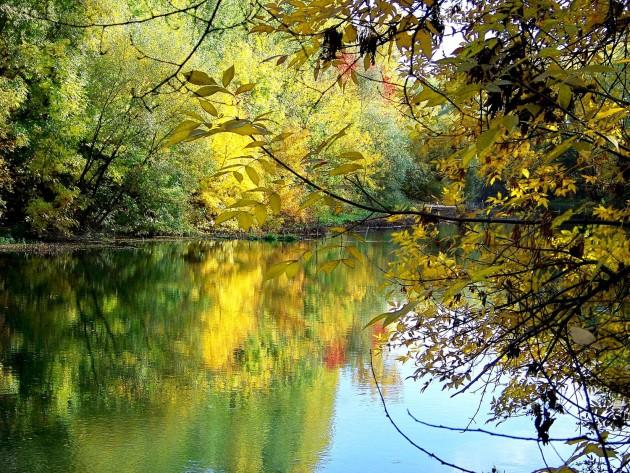 Malý Dunaj 44 - X.2013