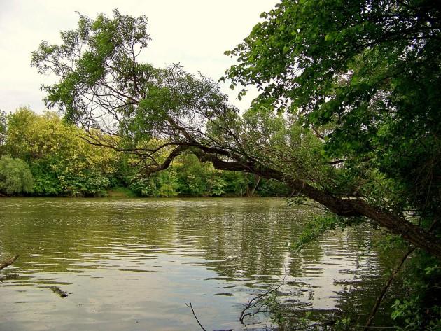 Malý Dunaj Potônské Lúky 20 - 19.5.2016