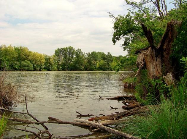 Malý Dunaj Potônské Lúky 24 - 19.5.2016