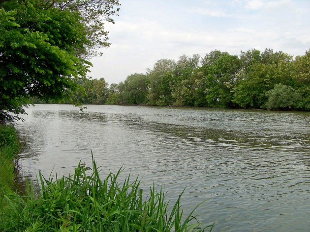 Malý Dunaj Potônské Lúky 27 - 19.5.2016