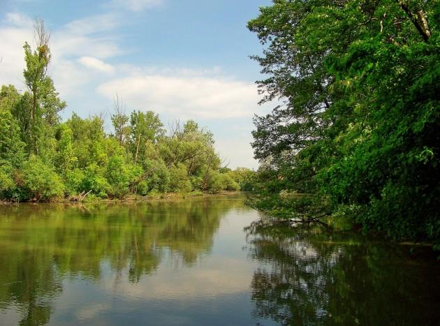Malý Dunaj Potônské Lúky 31 - 19.5.2016