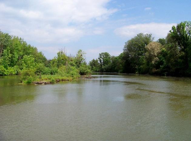 Malý Dunaj Potônské Lúky 33 - 19.5.2016
