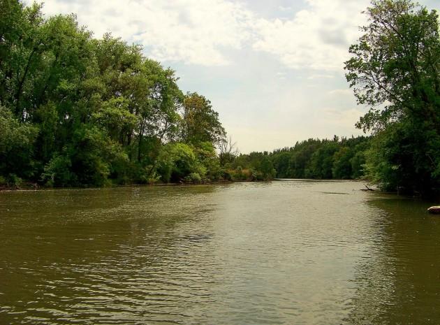 Malý Dunaj Potônské Lúky 37 - 19.5.2016