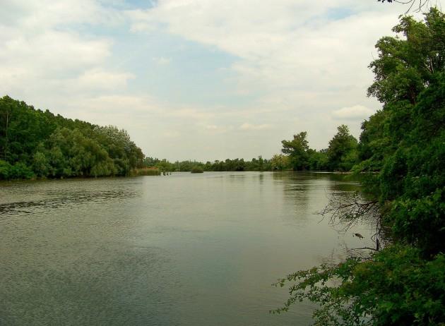 Malý Dunaj Potônské Lúky 40 - 19.5.2016
