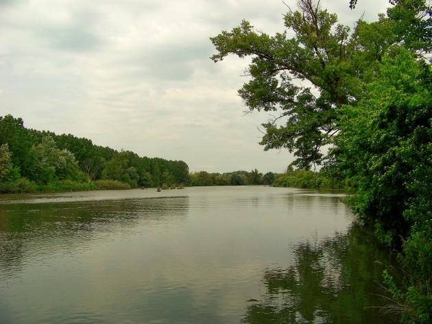Malý Dunaj Potônské Lúky 43 - 19.5.2016