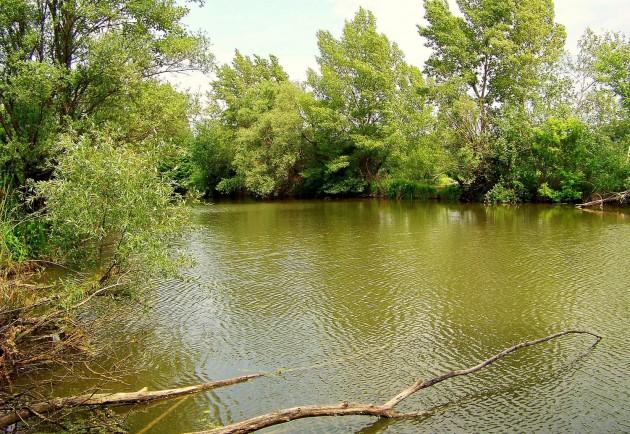 Malý Dunaj Potônské Lúky 44 - 19.5.2016