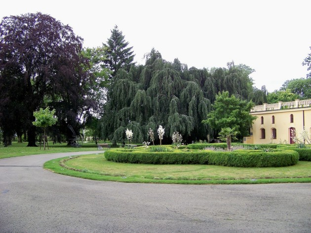48 Lipník nad Bečvou 50 - 16.7.2016