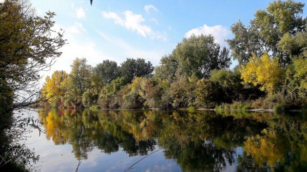maly-dunaj-za-vrakunou-19-16-10-2016