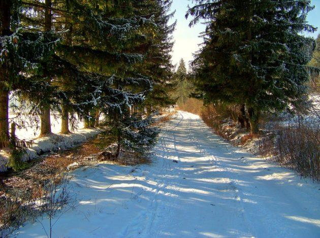 2-raksianska-dolina-2-21-1-2017