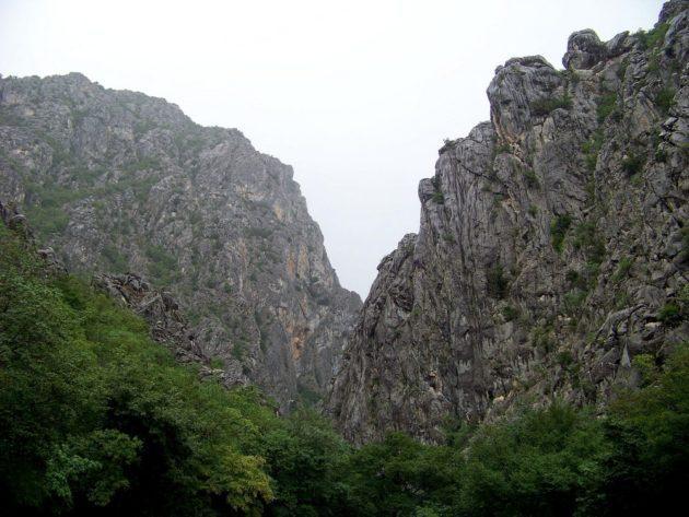 29-paklenica-37-viii-2015