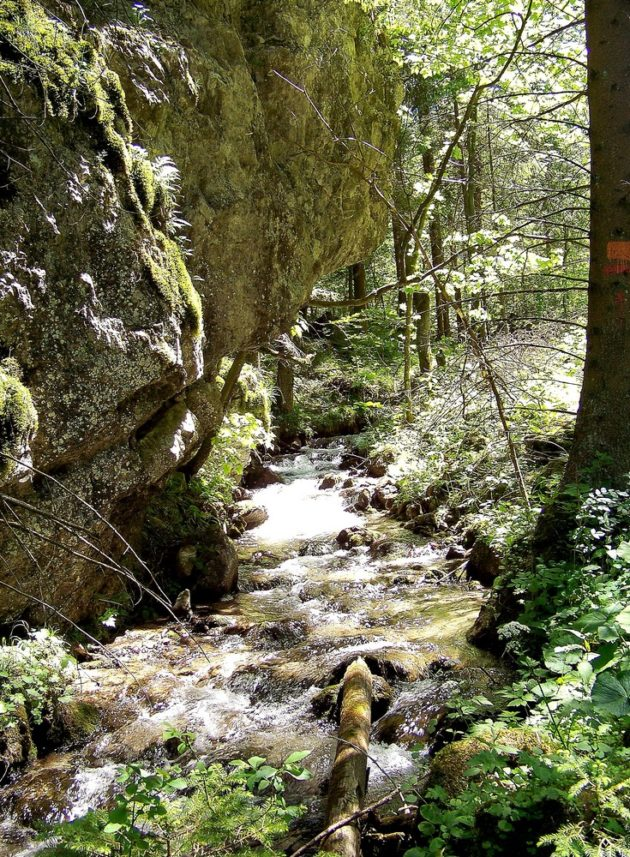 20-blatnicka-dolina-4-3-6-2017