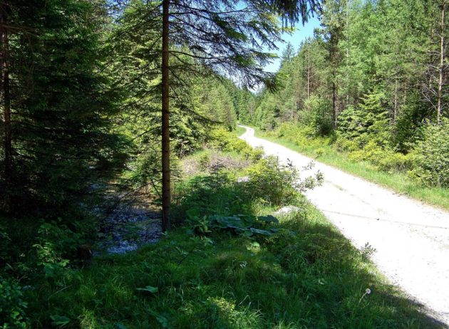 9-blatnicka-dolina-39-3-6-2017